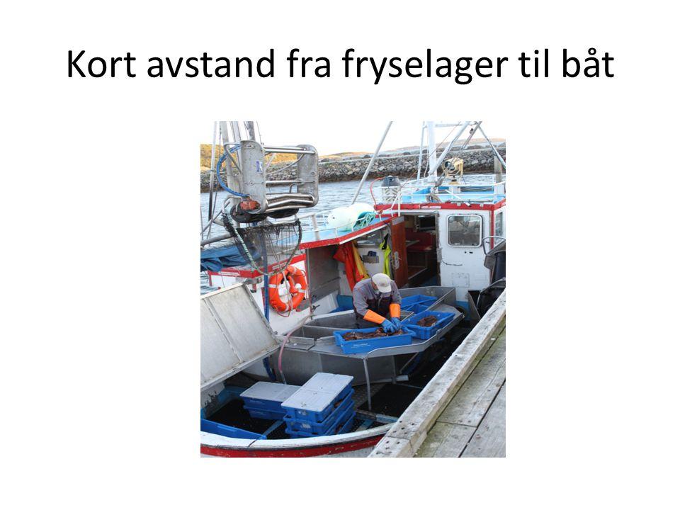 Kort avstand fra fryselager til båt