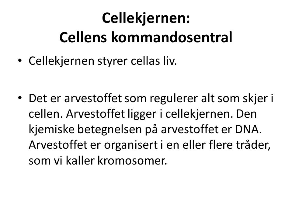 Cellekjernen: Cellens kommandosentral