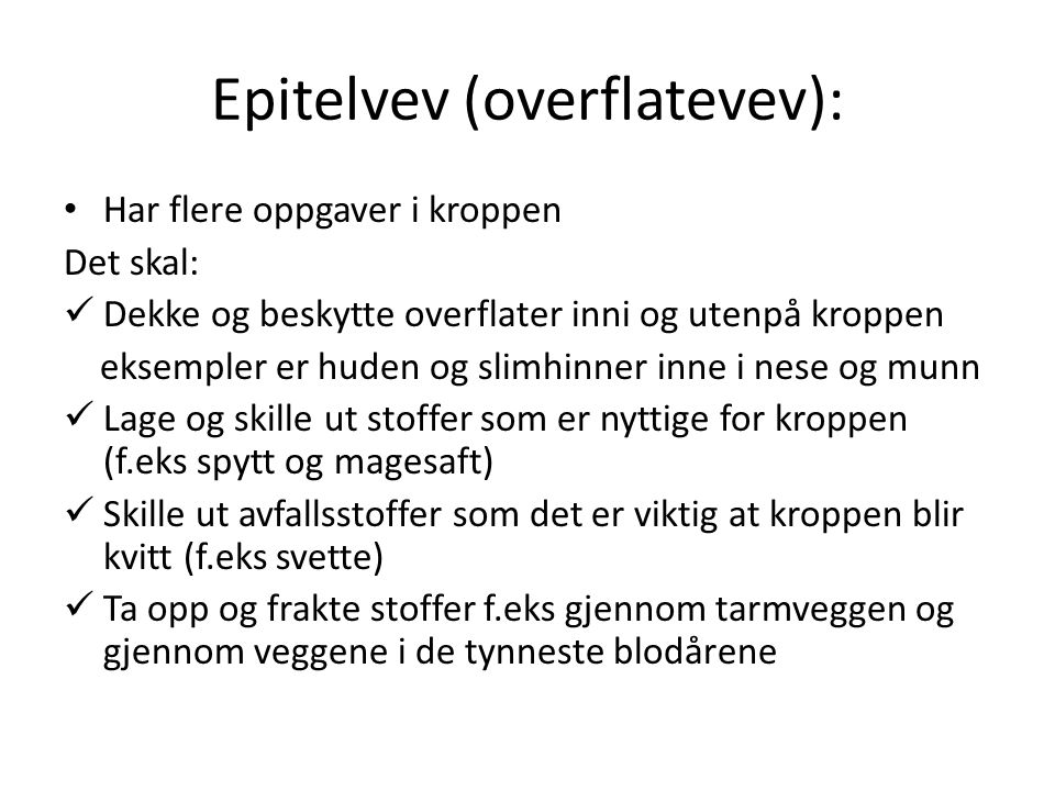 Epitelvev (overflatevev):