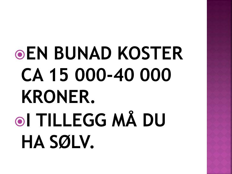 EN BUNAD KOSTER CA 15 000-40 000 KRONER.