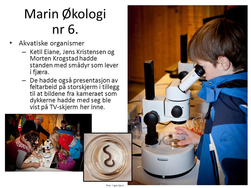 Marin Økologi nr 6. Akvatiske organismer