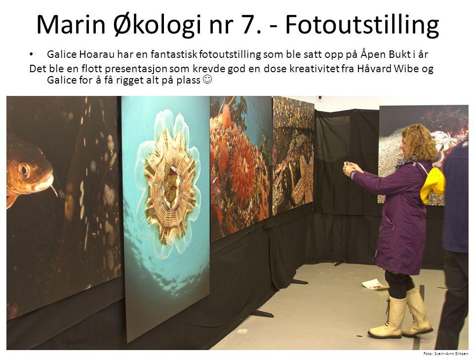Marin Økologi nr 7. - Fotoutstilling