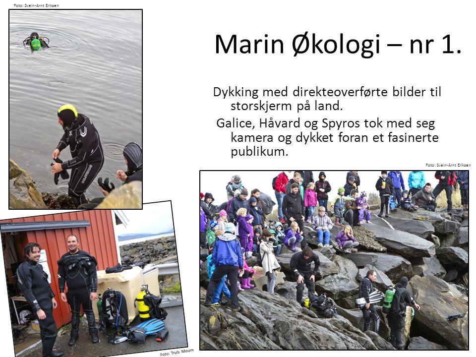 Foto: Svein-Arnt Eriksen