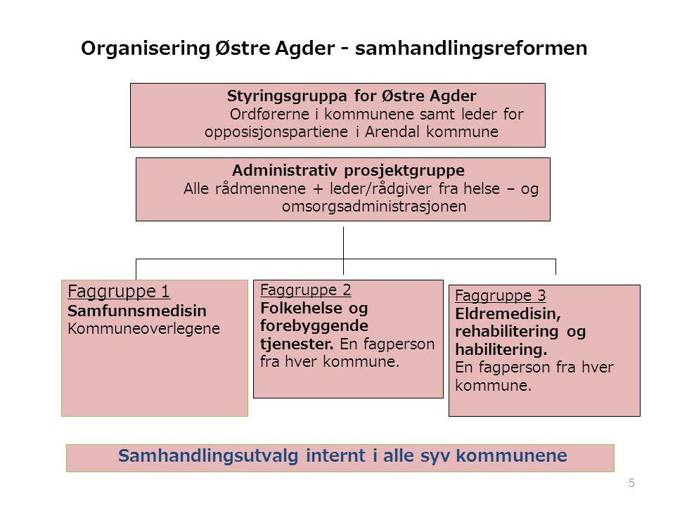 Organisering Østre Agder - samhandlingsreformen