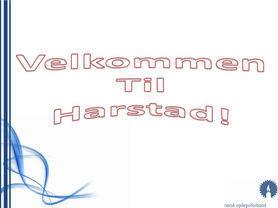 Velkommen Til Harstad!