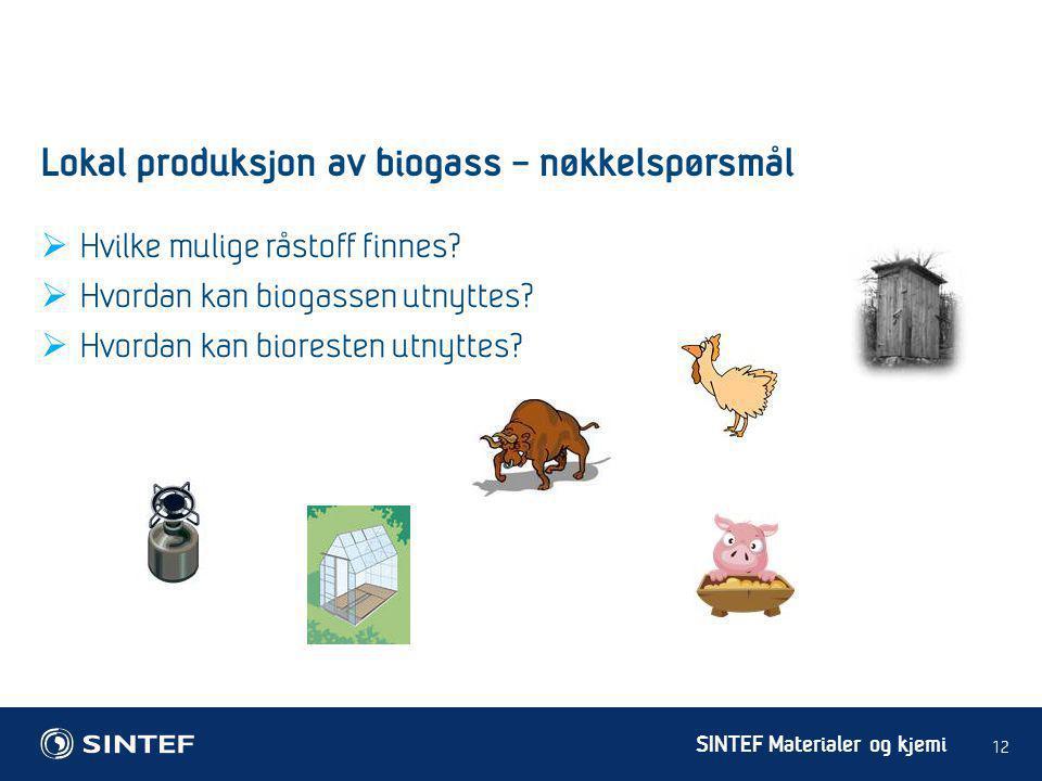Lokal produksjon av biogass – nøkkelspørsmål