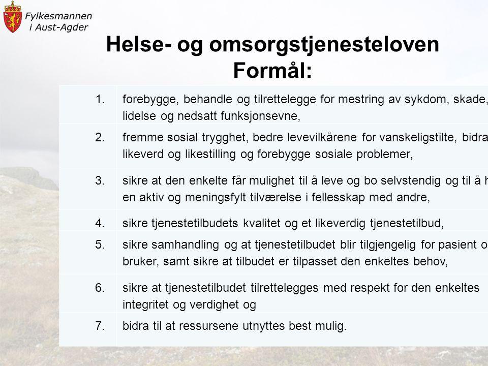 Helse- og omsorgstjenesteloven Formål: