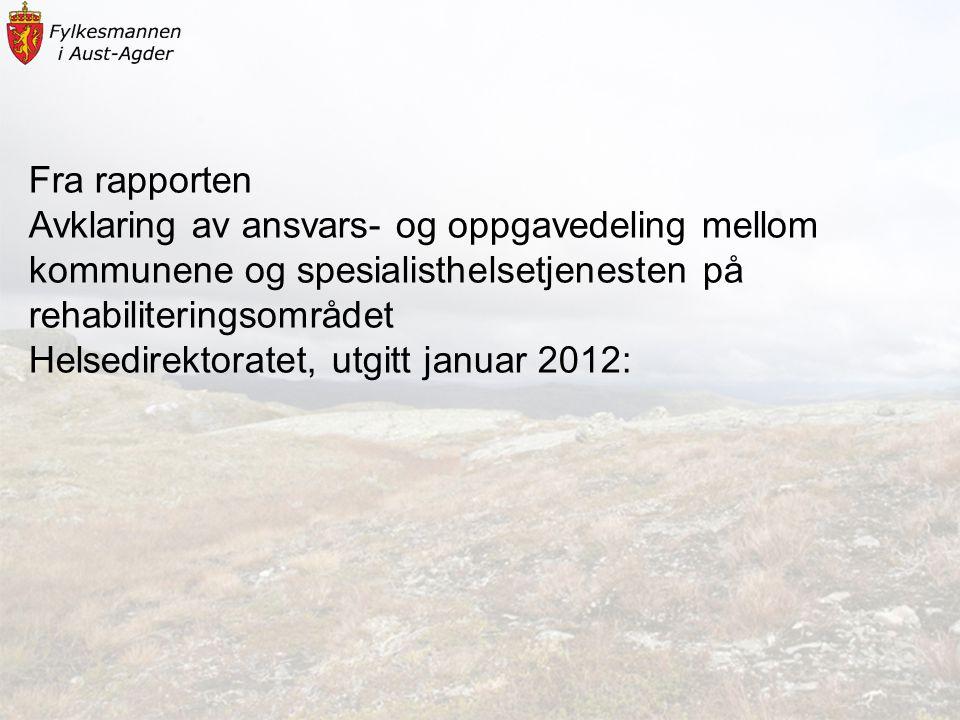Fra rapporten Avklaring av ansvars- og oppgavedeling mellom. kommunene og spesialisthelsetjenesten på rehabiliteringsområdet.