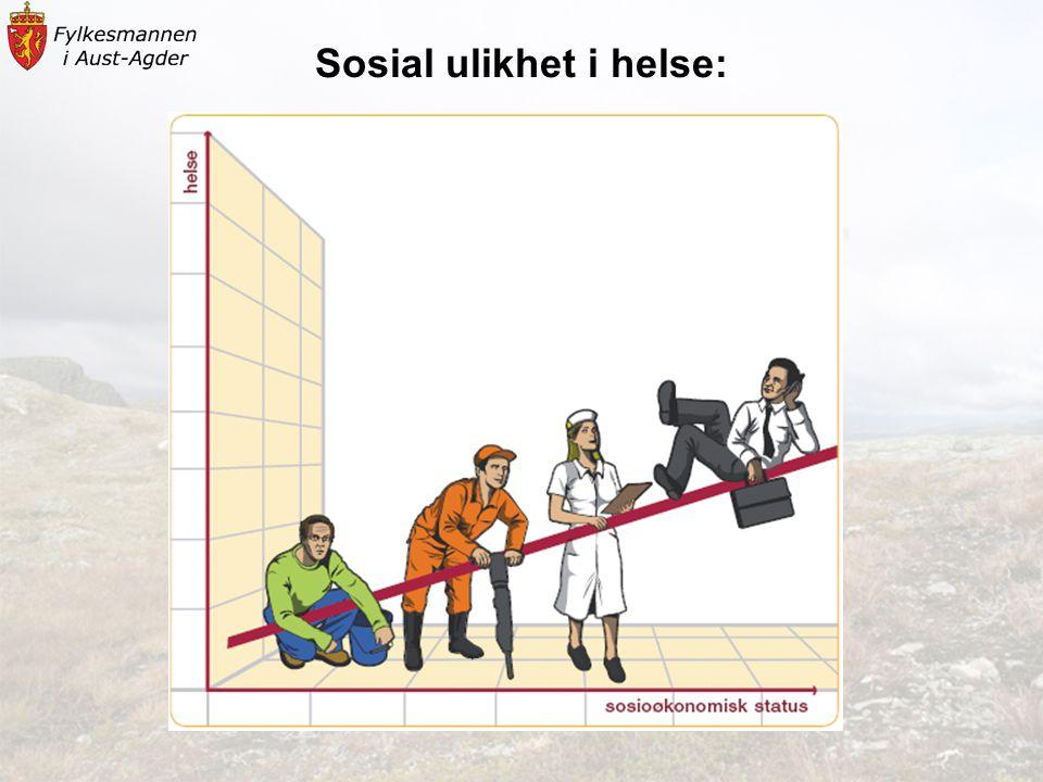 Sosial ulikhet i helse: