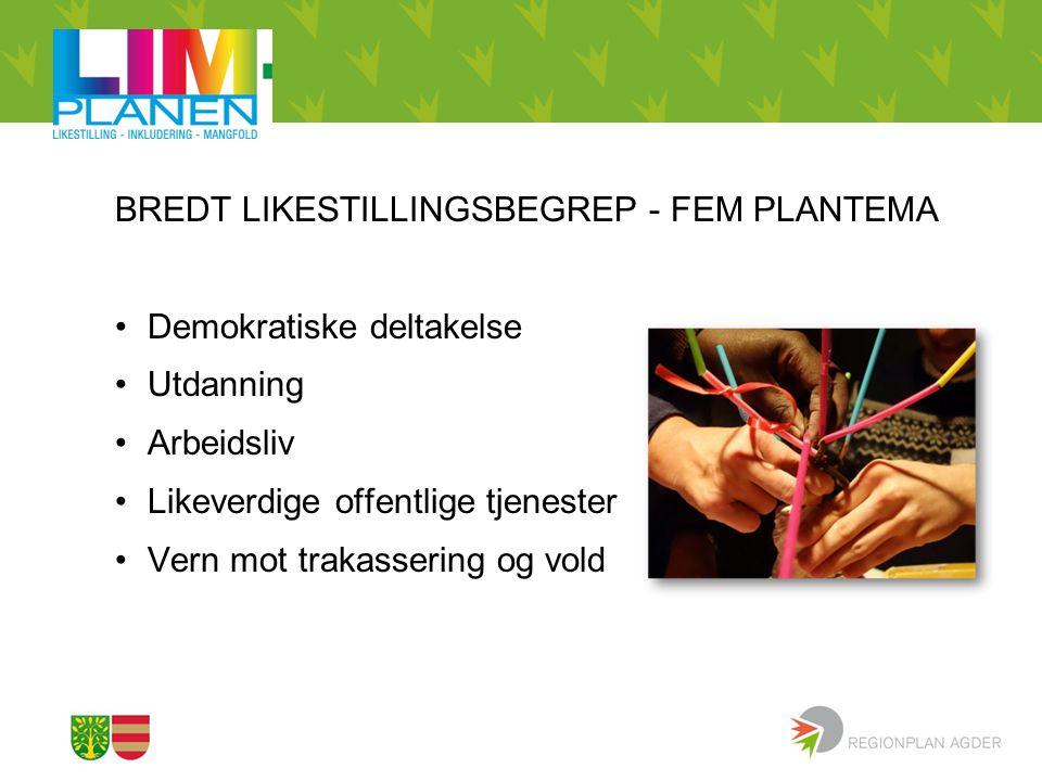 BREDT LIKESTILLINGSBEGREP - FEM PLANTEMA
