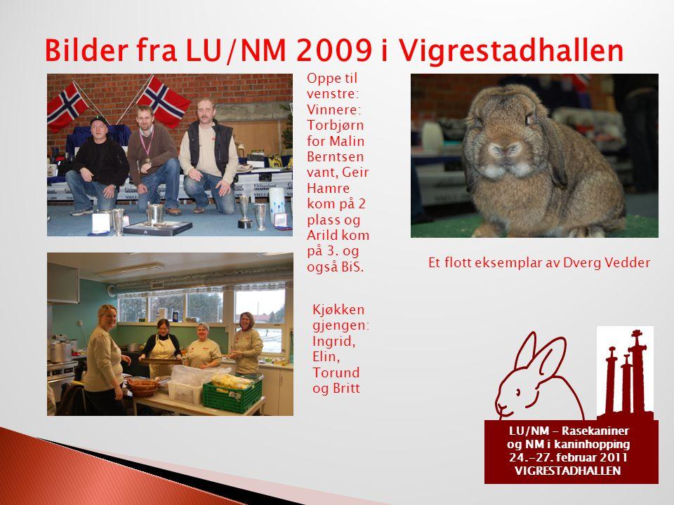 og NM i kaninhopping 24.-27. februar 2011