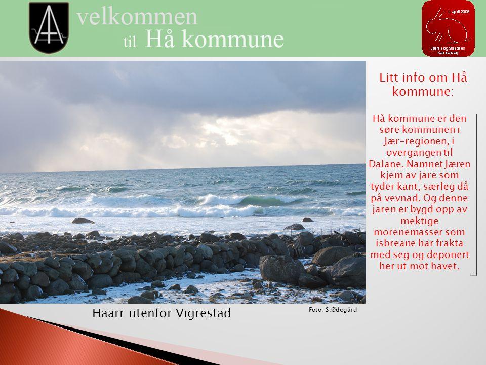 Litt info om Hå kommune: