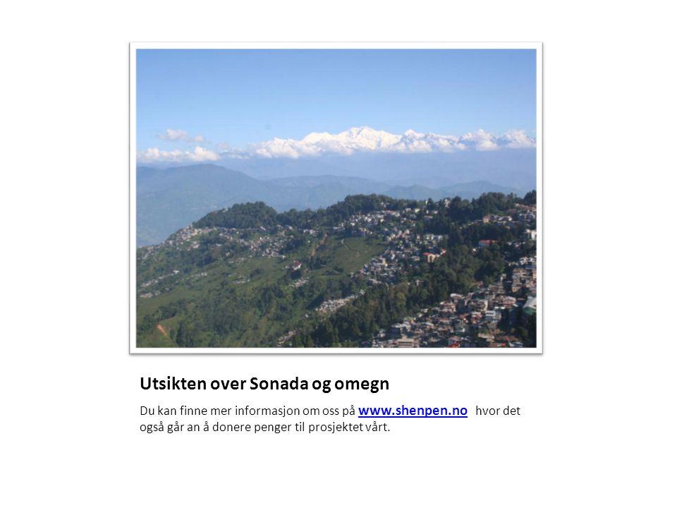 Utsikten over Sonada og omegn