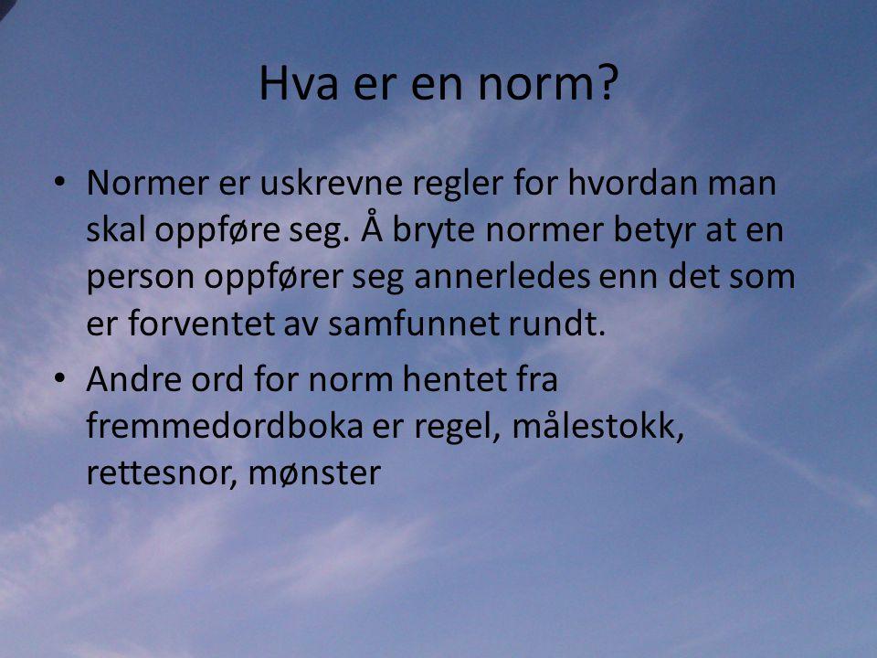 Hva er en norm