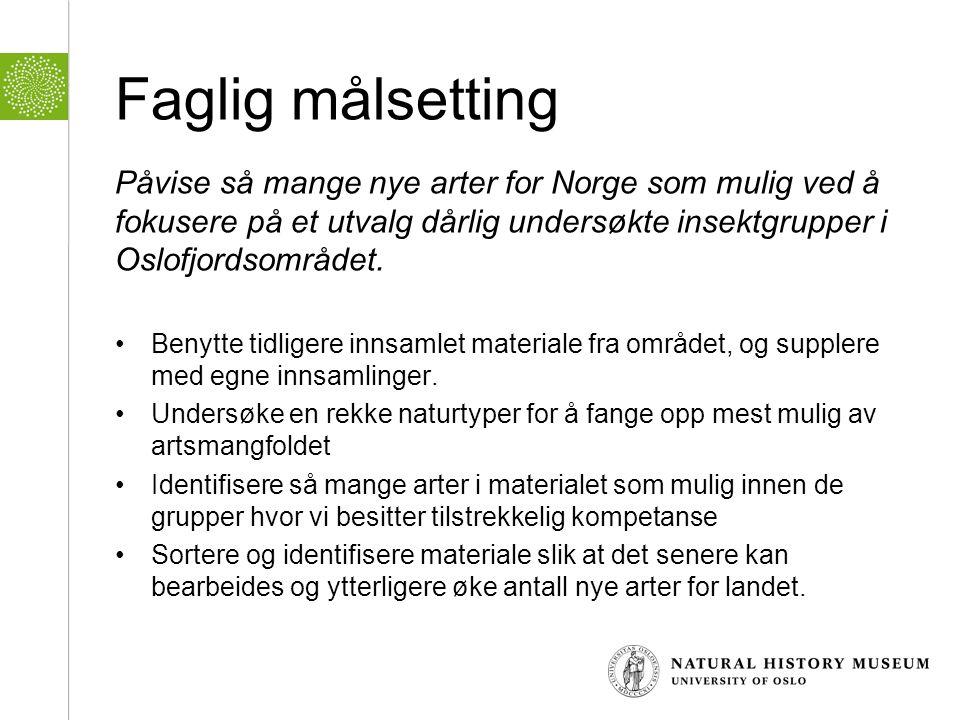 Faglig målsetting Påvise så mange nye arter for Norge som mulig ved å fokusere på et utvalg dårlig undersøkte insektgrupper i Oslofjordsområdet.