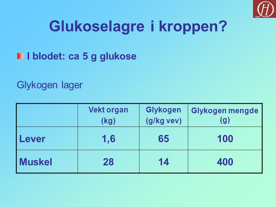Glukoselagre i kroppen
