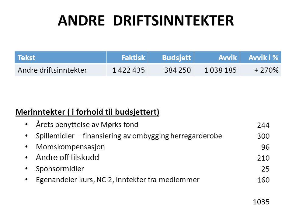 ANDRE DRIFTSINNTEKTER