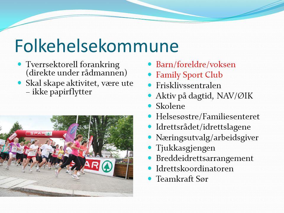 Folkehelsekommune Tverrsektorell forankring (direkte under rådmannen)