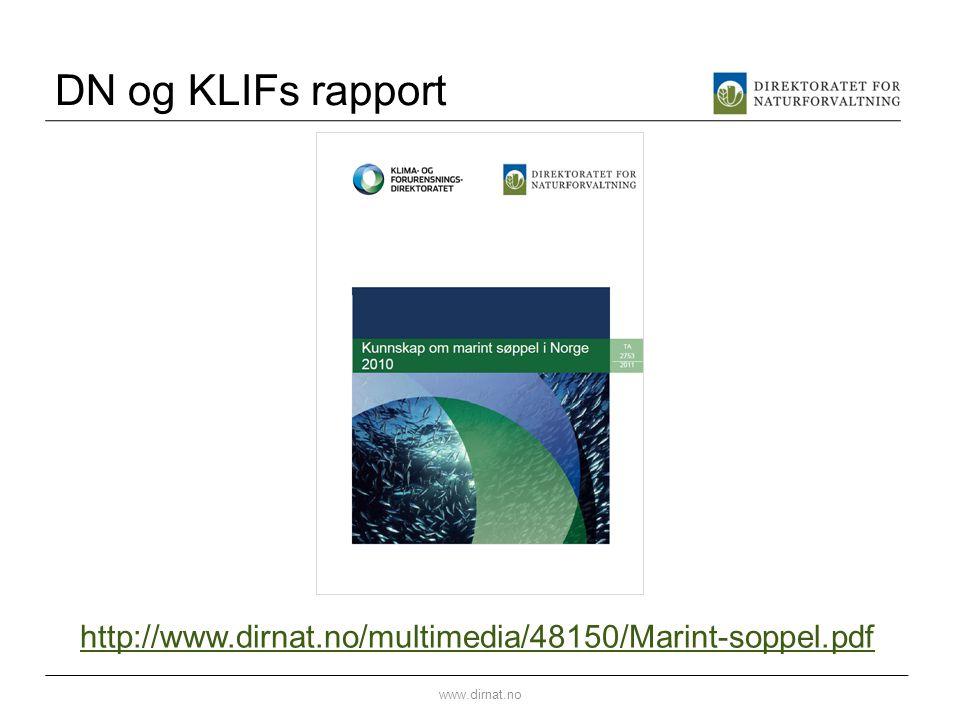 DN og KLIFs rapport http://www.dirnat.no/multimedia/48150/Marint-soppel.pdf www.dirnat.no