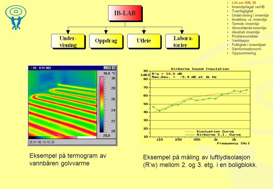 Eksempel på termogram av vannbåren golvvarme
