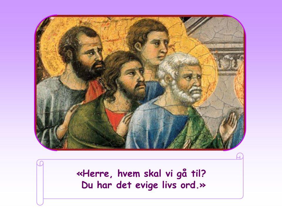 «Herre, hvem skal vi gå til Du har det evige livs ord.»