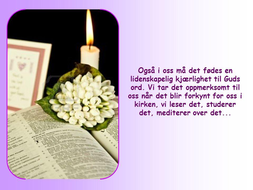 Også i oss må det fødes en lidenskapelig kjærlighet til Guds ord