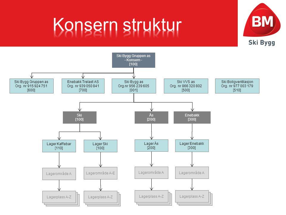 Konsern struktur Laget av Jon Trygve Markussen Ski Bygg Gruppen as