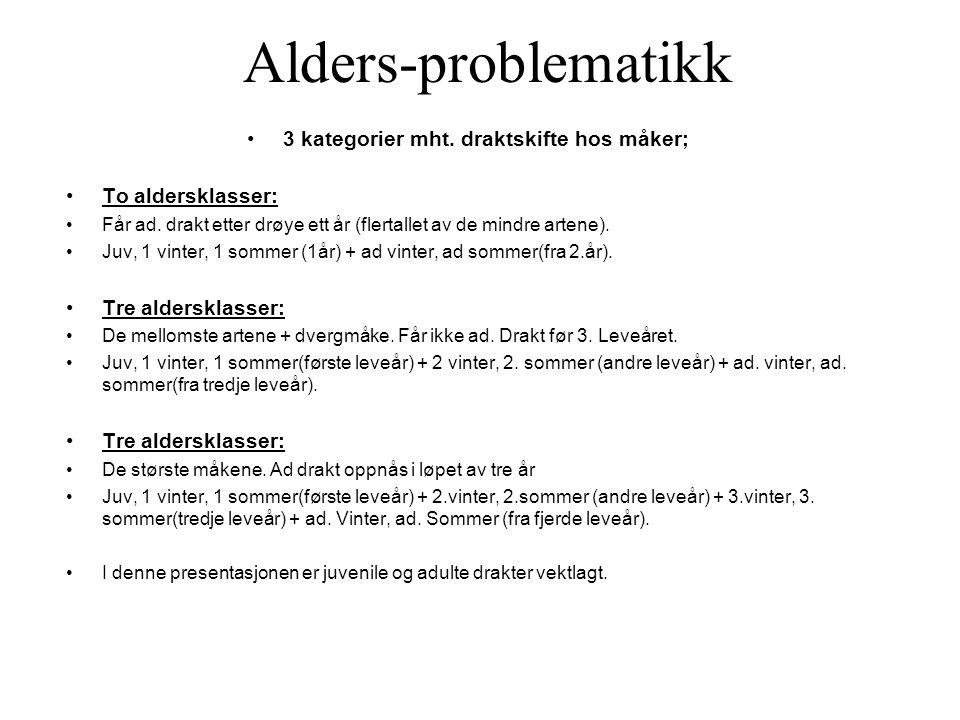 3 kategorier mht. draktskifte hos måker;