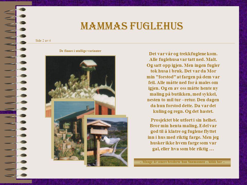 Mammas fuglehus Side 2 av 4. De finnes i utallige varianter.