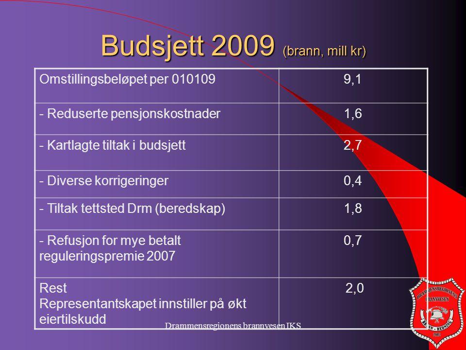 Budsjett 2009 (brann, mill kr)