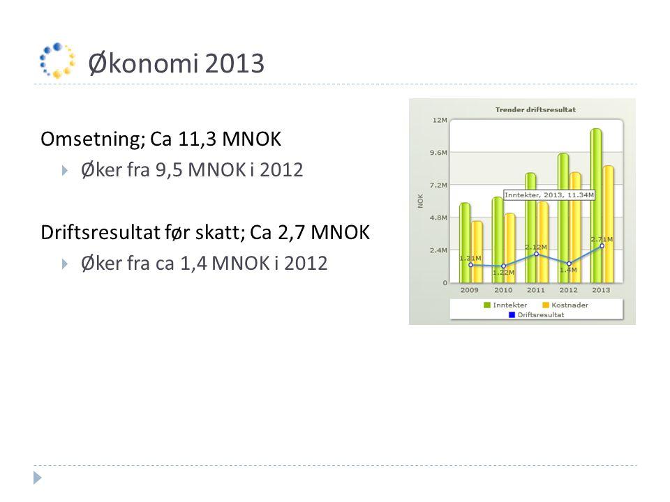 Økonomi 2013 Omsetning; Ca 11,3 MNOK