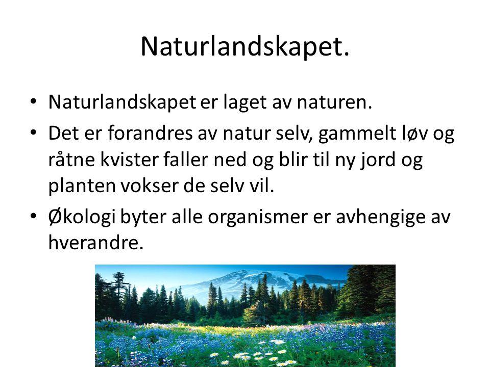 Naturlandskapet. Naturlandskapet er laget av naturen.