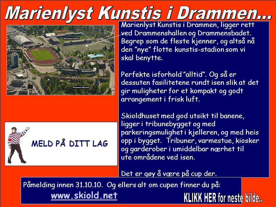 Marienlyst Kunstis i Drammen...