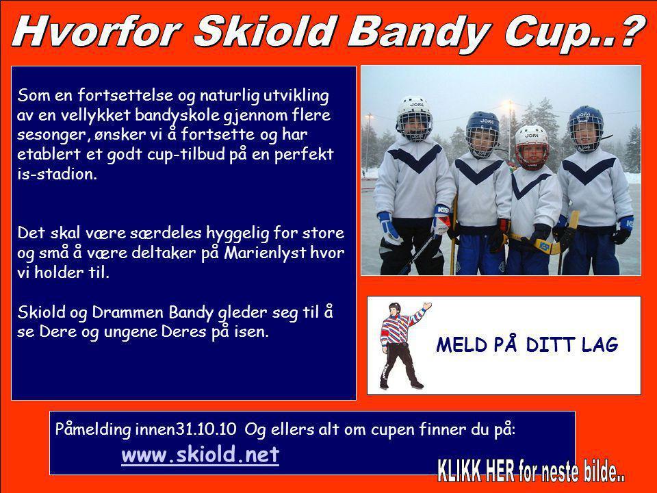 Hvorfor Skiold Bandy Cup..