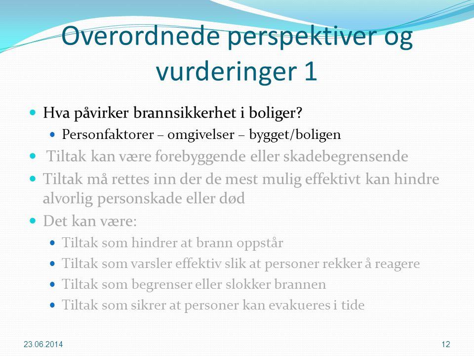 Overordnede perspektiver og vurderinger 1