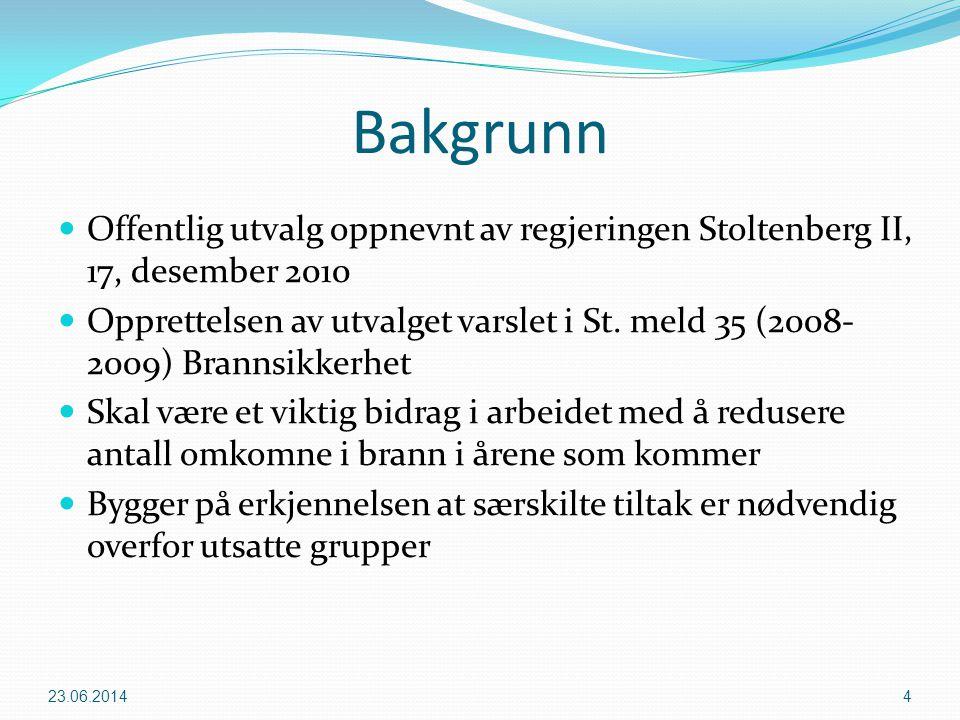 Bakgrunn Offentlig utvalg oppnevnt av regjeringen Stoltenberg II, 17, desember 2010.