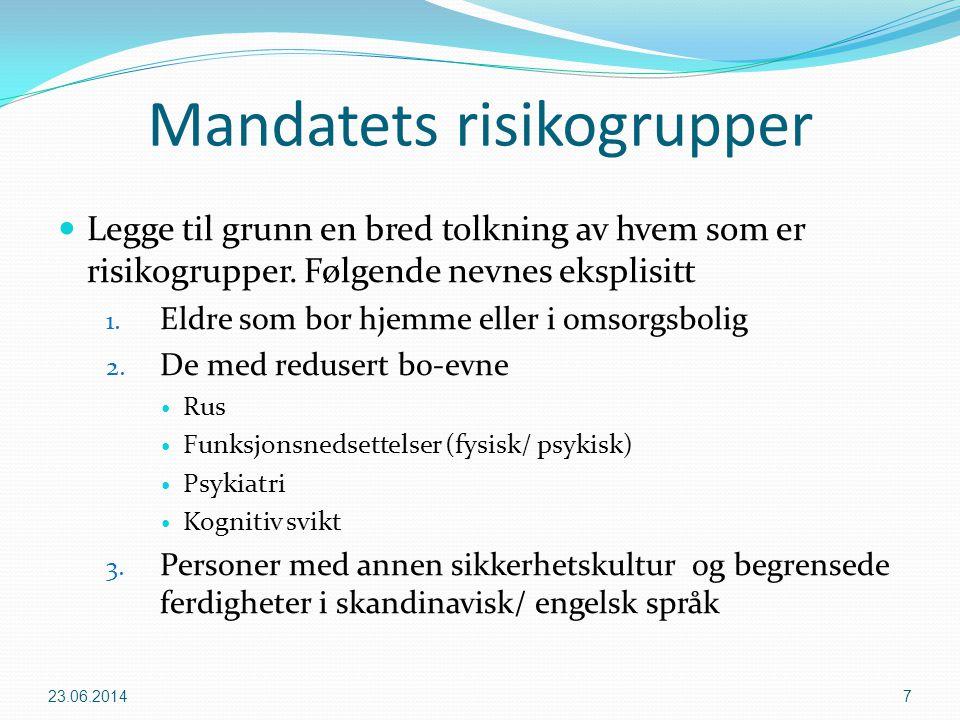 Mandatets risikogrupper