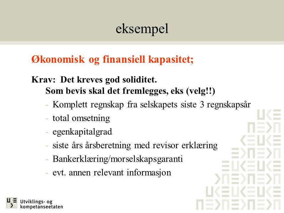 eksempel Økonomisk og finansiell kapasitet;