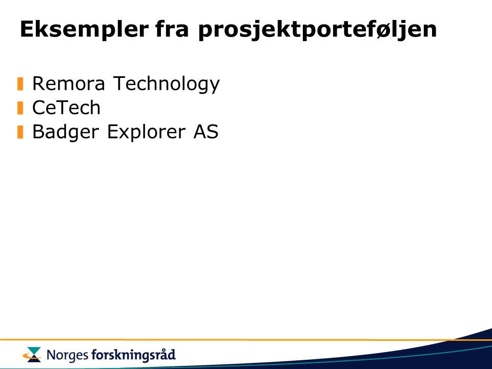 Eksempler fra prosjektporteføljen