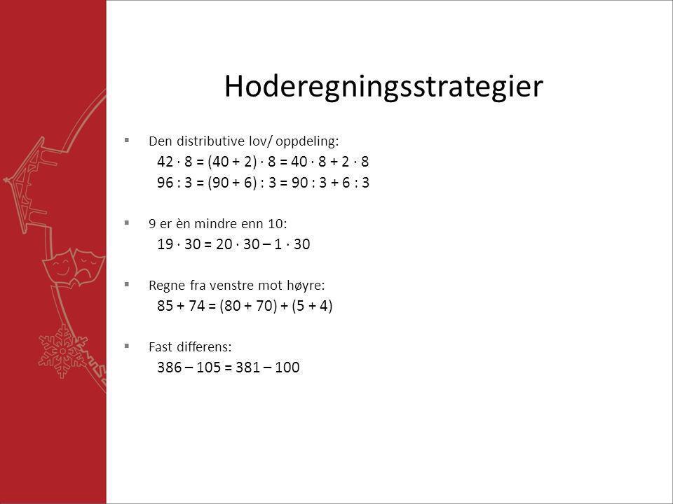 Hoderegningsstrategier