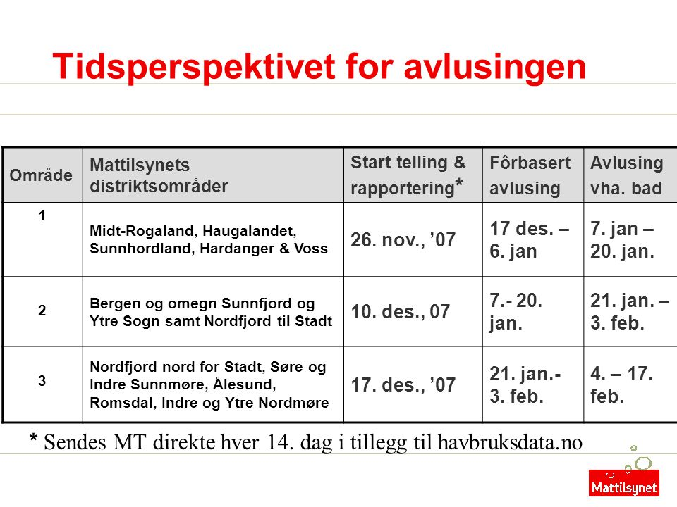 Tidsperspektivet for avlusingen