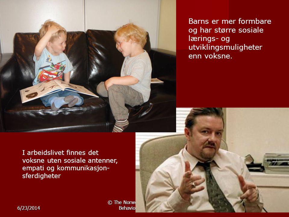 © The Norwegian Center for Child Behavioral Development