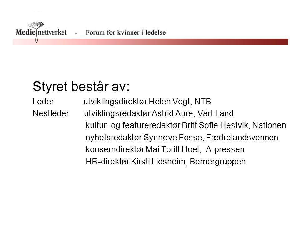 Styret består av: Leder utviklingsdirektør Helen Vogt, NTB