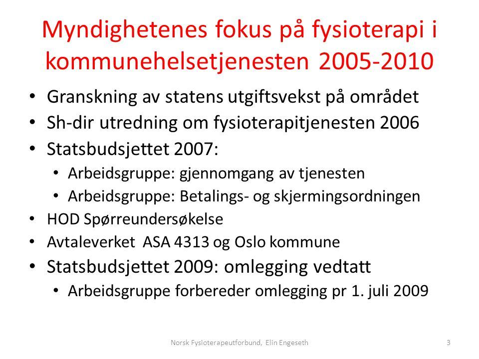 Myndighetenes fokus på fysioterapi i kommunehelsetjenesten 2005-2010