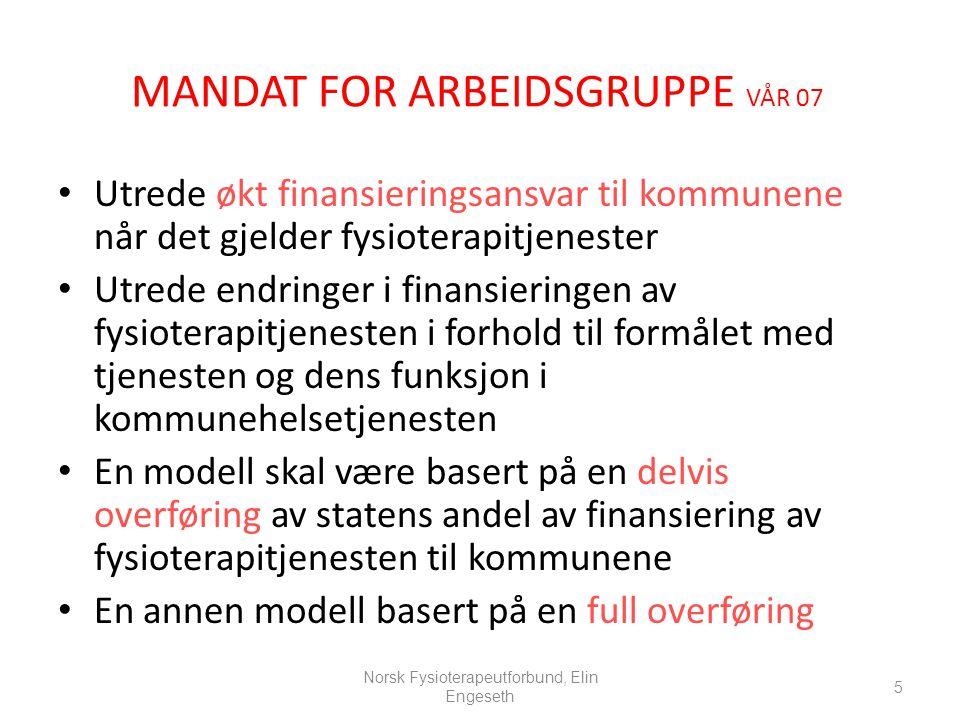MANDAT FOR ARBEIDSGRUPPE VÅR 07