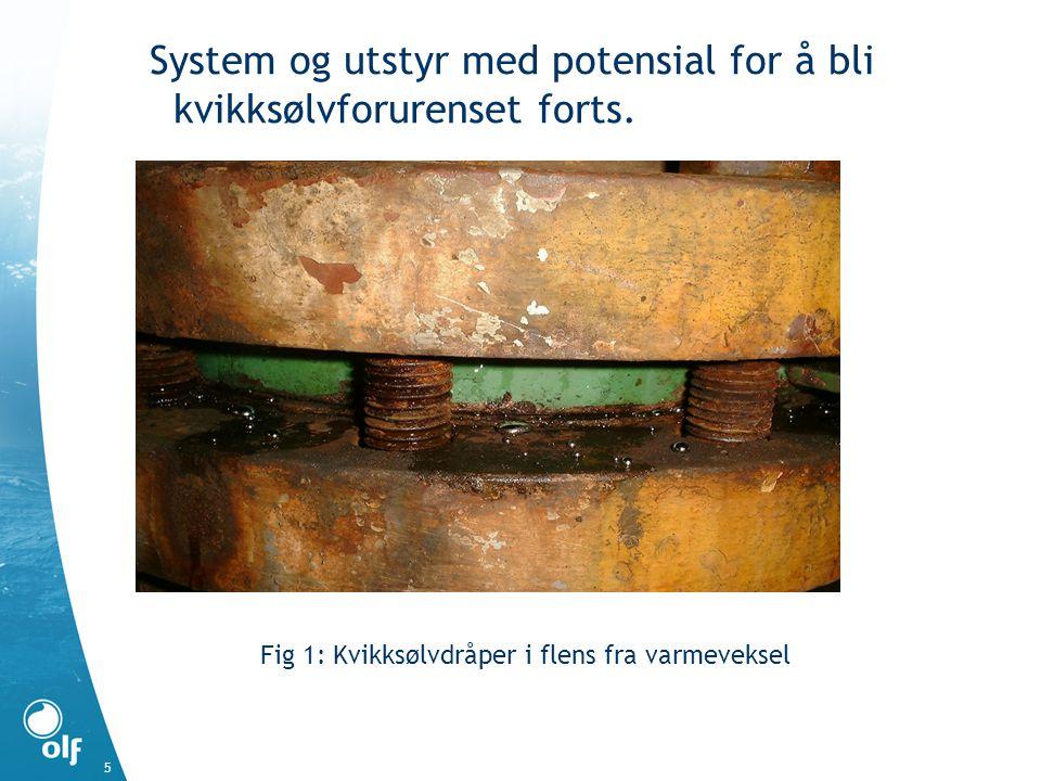 System og utstyr med potensial for å bli kvikksølvforurenset forts.