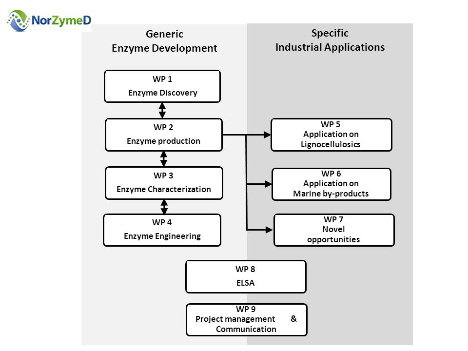 Specific Industrial Applications Generic Enzyme Development