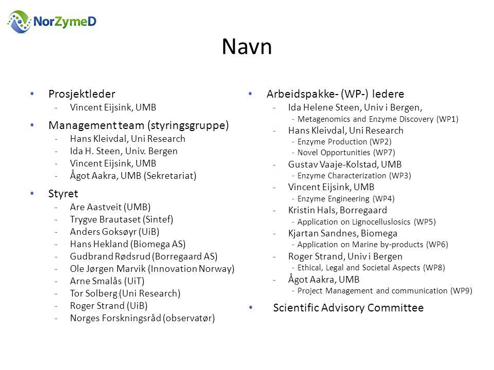 Navn Prosjektleder Management team (styringsgruppe) Styret