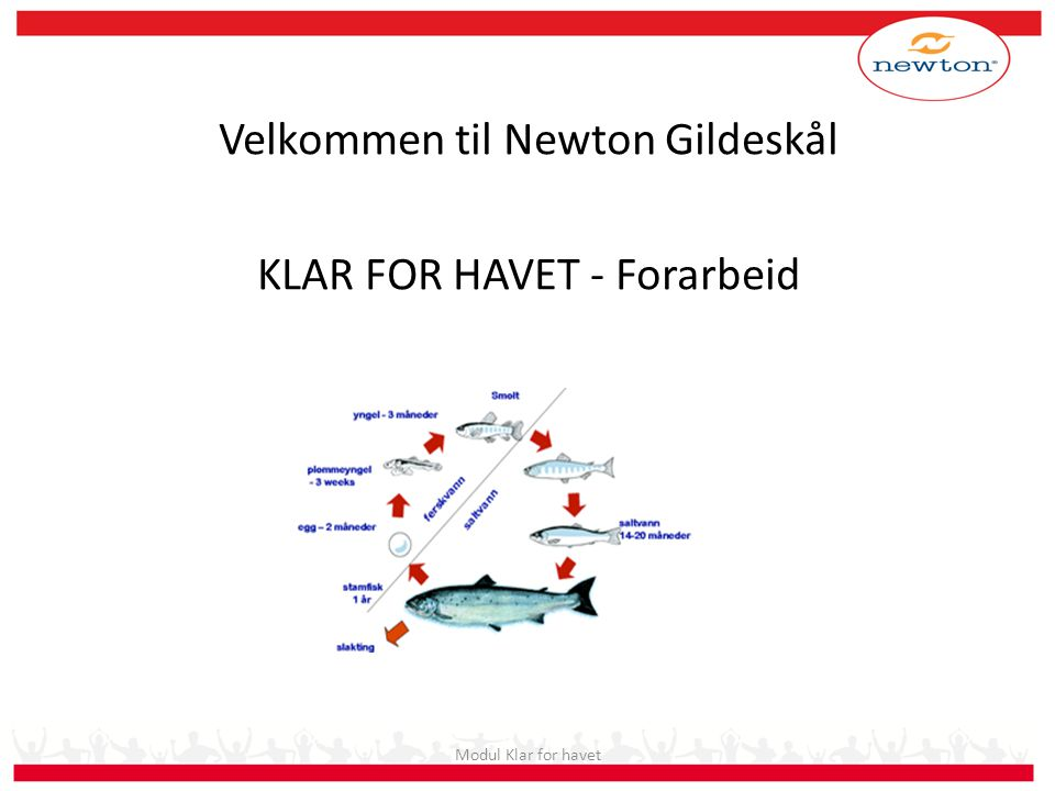 Velkommen til Newton Gildeskål KLAR FOR HAVET - Forarbeid