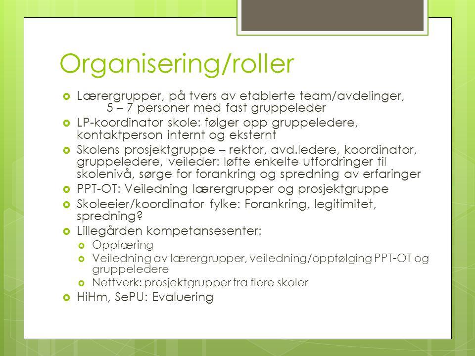 Organisering/roller Lærergrupper, på tvers av etablerte team/avdelinger, 5 – 7 personer med fast gruppeleder.